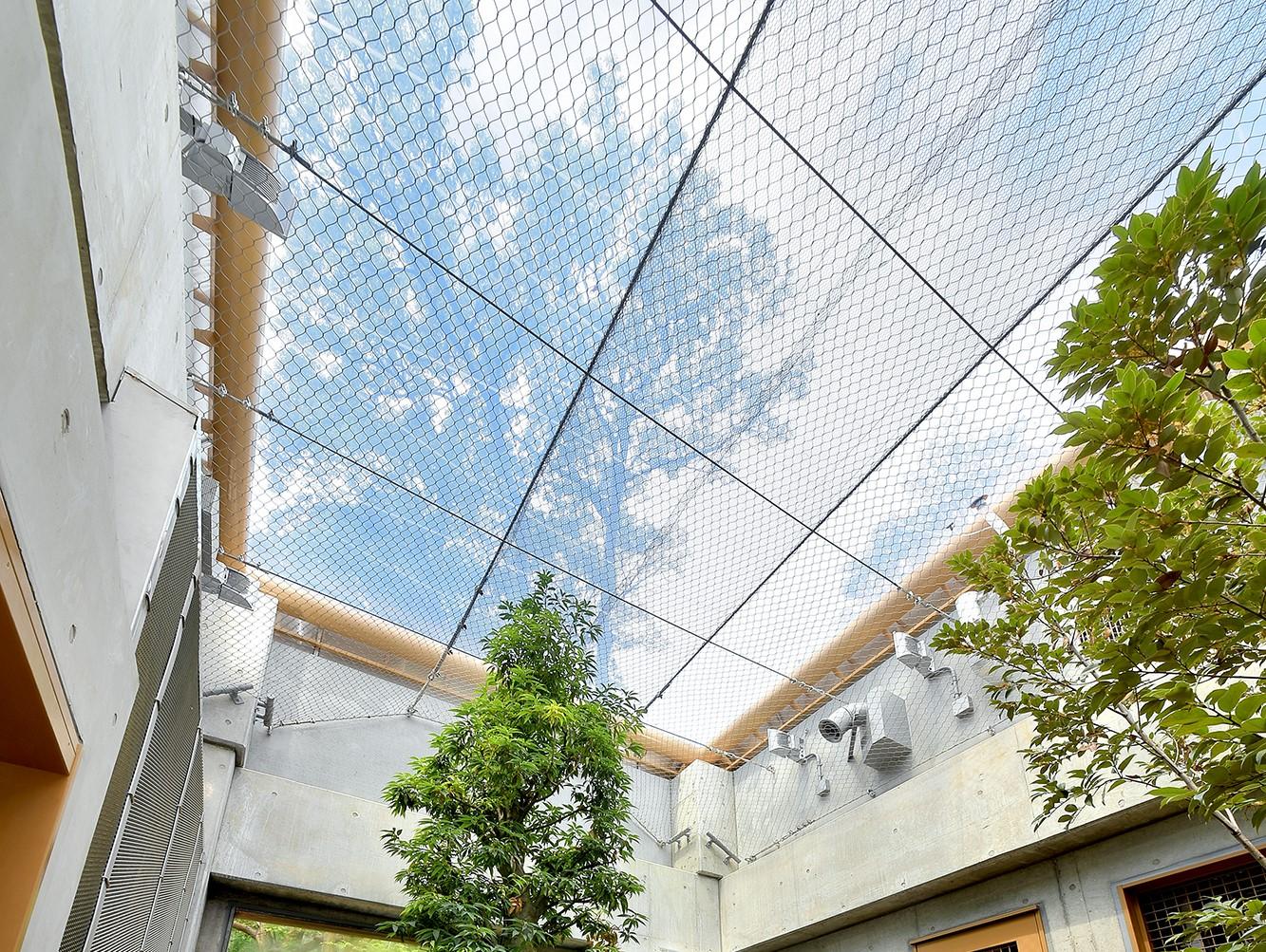 茶臼山動物園「オランウータンの森」 ②空が見える快適素材 ETFEを採用