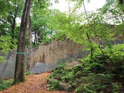茶臼山動物園「オランウータンの森」 ④優しい壁になりますように!